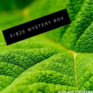 Other - SPECIAL 5 for $15! Mystery Box